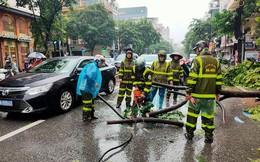 [Ảnh] Người dân, công an đội mưa dọn hàng loạt cây xanh bật gốc trên phố Hà Nội sau cơn bão số 3