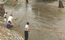 Hà Nội: Người dân mang vó ra sông Kim Ngưu bắt cả tạ cá sau mưa lớn
