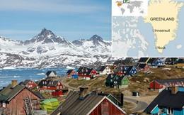Đây là nguyên nhân khiến chó kéo xe ở Greenland đứng trước nguy cơ bị thất nghiệp