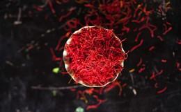 Giá gần nửa tỷ 1kg, nhụy hoa nghệ tây có phải thần dược: Hãy nghe các chuyên gia trả lời!