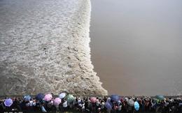 24h qua ảnh: Du khách xem thủy triều trên sông Tiền Đường