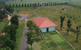 Kiểm điểm các cá nhân giao đất trái luật cho người nhà giám đốc Sở KHĐT