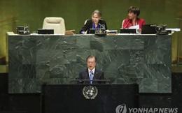 Khu phi quân sự biên giới liên Triều có thể trở thành khu hòa bình quốc tế?