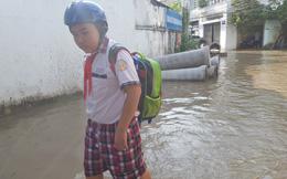 Thông báo hỏa tốc: Học sinh mầm non, tiểu học ở Cần Thơ được nghỉ học vì triều cường