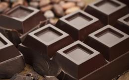 Chất béo bão hòa trong sô-cô-la có hại như trong thịt?