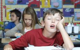 10 dấu hiệu cho thấy con bạn có năng khiếu vượt trội hơn người và thông minh bẩm sinh