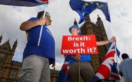 Dân Anh muốn trưng cầu dân ý lại, ngừng rời khỏi EU