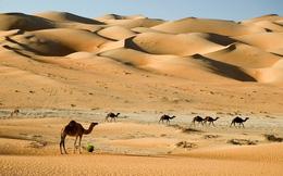 Hóa ra, cát trên sa mạc lại có nguồn gốc từ vũ trụ?