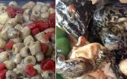 Dưa hấu xào chuối, da ếch... những món ăn kinh dị nhất ở canteen các trường ĐH Trung Quốc khiến sinh viên khiếp đảm