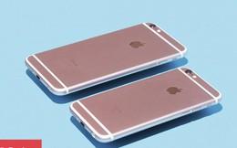 Đây là chiếc iPhone được bán ra nhiều nhất tại Việt Nam năm 2018, bạn sẽ vô cùng bất ngờ khi biết