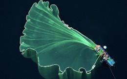 Việt Nam xuất sắc giành Top 2 ảnh siêu ảo chụp bằng drone, nhìn như lạc vào chốn tiên cảnh