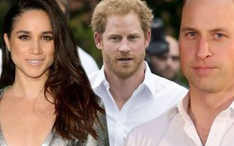 Hoàng tử William và em trai Harry đã không nói chuyện suốt 250 ngày qua vì Meghan
