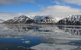"""Phát hiện dấu vết """"siêu quái vật"""" tí hon ở Bắc Cực: Cực kỳ nguy hiểm cho con người"""