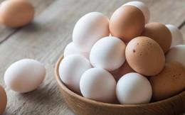 Hỏi đơn giản mà mà ít ai biết câu trả lời: Những chú gà con ở trong quả trứng kín mít làm sao thở được nhỉ?