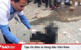 Hai thanh niên đánh người trộm hoa đào ngày Tết tử vong đã đến công an đầu thú