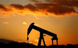 Giá dầu tăng cao nhất trong năm 2019 sau khi Mỹ trừng phạt Venezuela