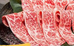 Có gì trong miếng thịt bò đắt nhất thế giới, tận 2 đến 3 triệu đồng cho 400g?