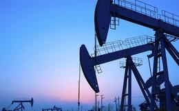 Giá dầu giảm sâu khi nguồn cung tăng mạnh