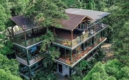 Vị giáo sư độc thân sở hữu ngôi nhà kính trong thung lũng 12.000m² với cuộc sống khó ai tin được