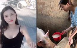 """""""Hotgirl cho lợn ăn"""" dù xinh vẫn bị dân mạng ném đá không thương tiếc vì làm màu"""