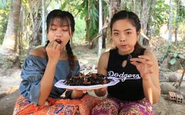 Hai cô gái Campuchia bình thản chế biến rồi thưởng thức nhện độc khiến dân tình khiếp đảm