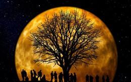 Thời điểm thuận lợi để quan sát 'siêu trăng' vào ngày mai ở Việt Nam?