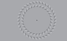 """Ảo ảnh thị giác nổi tiếng này thực sự khiến não """"đơ"""" theo đúng nghĩa đen"""