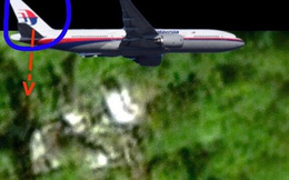 Rộ tin phát hiện máy bay có logo giống MH 370 ở rừng Campuchia