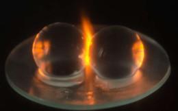 Hiện tượng bí ẩn khi cho 2 quả nho vào lò vi sóng và cuối cùng khoa học cũng giải mã thành công
