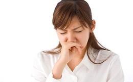 Bài thuốc chữa viêm xoang mũi mạn tính