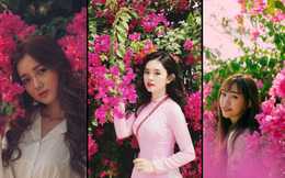 Chụp cả trăm kiểu đều đẹp, đây là giàn hoa được dân sống ảo truy lùng tại một trường đại học ở Việt Nam