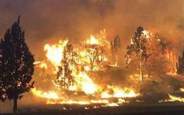 """Còn nhớ vụ cháy rừng như """"tận thế"""" tại California năm ngoái chứ? Khoa học tin rằng từ nay nó có thể xảy ra mỗi năm"""
