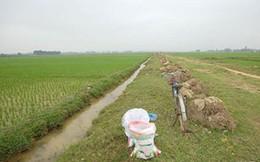 Dự án trường đua ngựa tại Sóc Sơn: Dân phấp phỏng chờ thông tin