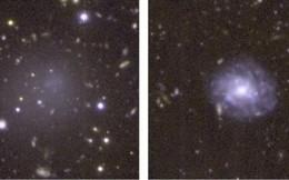 Phát hiện thiên hà 'hóa thạch sống' từ thuở sơ khai của vũ trụ