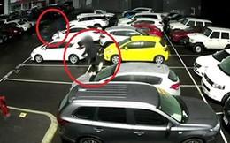 Hai cậu bé đập phá 37 chiếc xe ôtô ở Australia