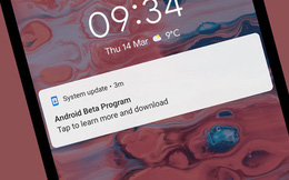 15 tính năng đáng chú ý trên Android Q Beta