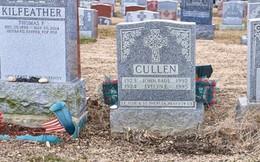 Đến thăm mộ cha mẹ, người phụ nữ kinh hồn bạt vía khi bị 'nuốt' xuống dưới lòng đất