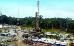 """Ngoài dự án tại Venezuela đang """"sa lầy"""", các dự án ở nước ngoài của PVN ra sao?"""