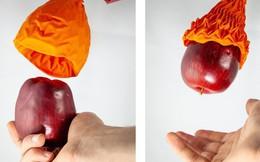 Trông như bông hoa héo nhưng bàn tay robot này có thể nâng gấp 100 lần trọng lượng của nó