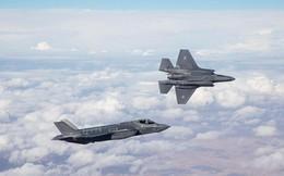Tiêm kích F-35 Israel bị S-200 của Nga ở Syria hạ gục hay do đâm phải chim trời?