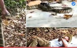 Tưởng rắn đã chết, người đàn ông cầm con vật tạo dáng chụp ảnh thì gặp cái kết thảm thương