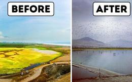 Người đàn ông này đã nghĩ ra ý tưởng thiên tài để làm sạch hồ nước bị ô nhiễm, và đó là thứ Trái đất đang rất cần