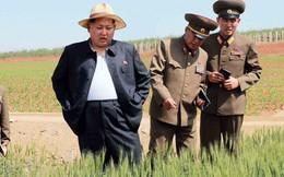 Không thuyết phục được Mỹ nới lỏng trừng phạt, kinh tế Triều Tiên đang lâm nguy?