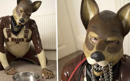 Quá chán làm người, thanh niên Anh quyết định làm chó sống đời nhàn nhã