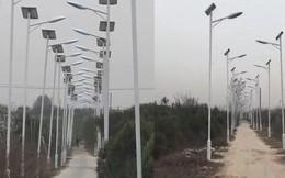 Góc cơ hội: Nông dân Trung Quốc trồng hơn 1000 cột đèn trên quãng đường 3 km để tăng tiền đền bù