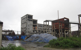 Dự án thép nợ hơn 1500 tỷ, đưa ra đấu giá hơn 100 tỷ
