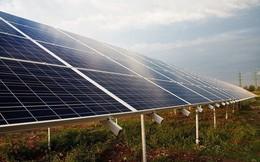 Florida tiến hành đóng cửa các nhà máy khí đốt tự nhiên, xây dựng pin năng lượng mặt trời khổng lồ