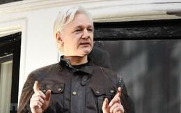 Bộ Tư pháp Mỹ: Nhà sáng lập WikiLeaks đối mặt với mức án 5 năm tù giam