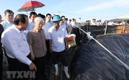 Hình ảnh Tổng Bí thư, Chủ tịch nước làm việc ở Kiên Giang