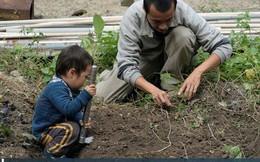 Người đàn ông Hong Kong bỏ phố về quê để sống xanh: Tự nhóm lửa, trồng rau, cả gia đình không dùng giấy vệ sinh suốt hơn 10 năm trời